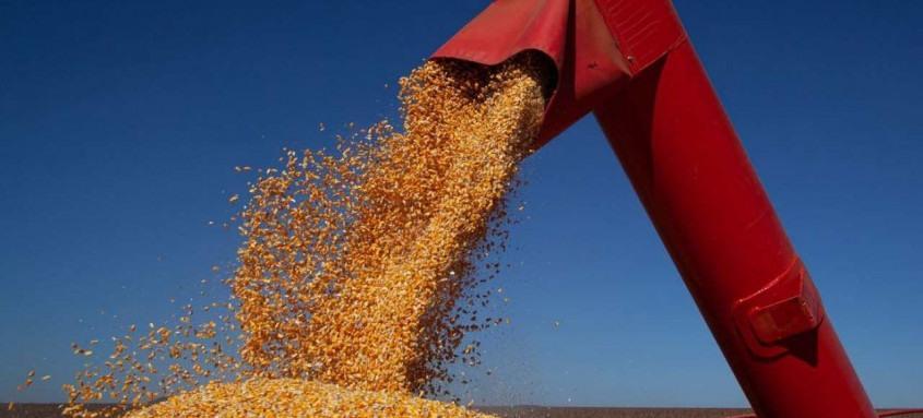Estimativa é do Levantamento Sistemático da Produção Agrícola