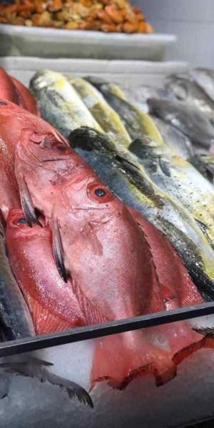 Bacalhau, salmão, camarão e peixes nobres, como cherne e badejo, são as grandes estrelas do cardápio do fluminense