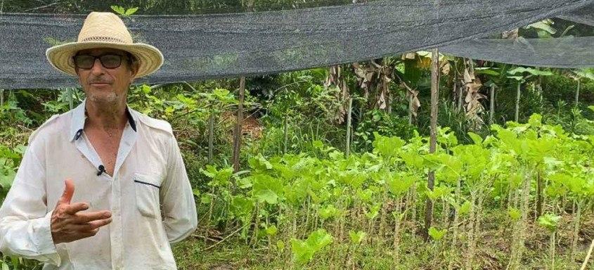 Os agricultores familiares podem participar da chamada pública do Programa Nacional de Alimentação Escolar (PNAE)
