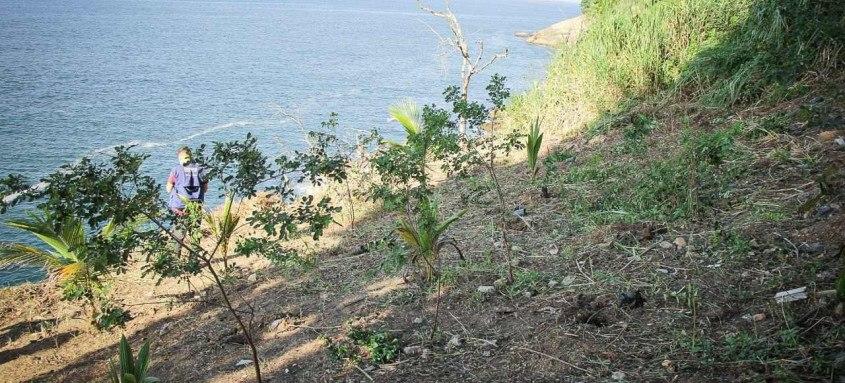 Iniciativa prevê o reflorestamento da região com mais de 300 mudas a serem plantadas