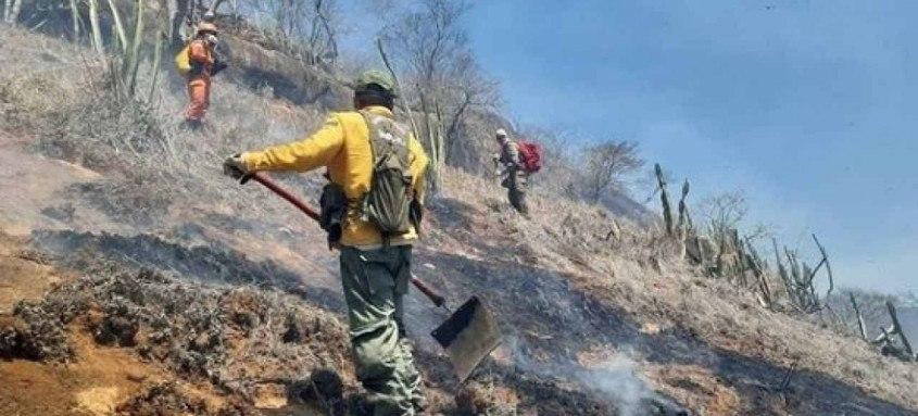 Objetivo da mobilização é reduzir, neste ano, 30% dos focos de incêndio e queimadas na Região Serrana do Estado