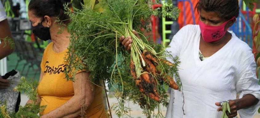 Alunos da rede pública participaram do replantio de hortaliças