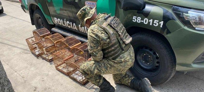 Agentes da Unidade de Policiamento Ambiental do Parque Estadual da Serra da Tiririca recuperaram animais no Porto Novo